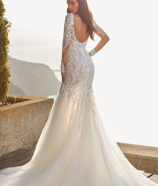Cypress Low Back Long Sleeve Wedding Dress with Lace and Tulle